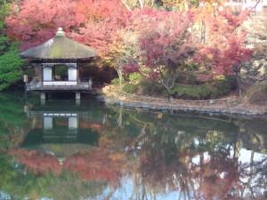 和歌山城 西之丸庭園 内堀と鳶魚閣