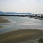 和歌の浦 和歌川河口の干潟