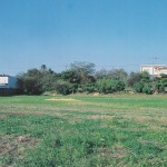 太田城水攻め堤跡の写真