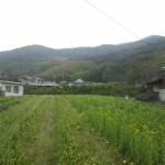 和佐山城跡の写真