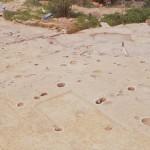 奥山田遺跡 掘立柱建物