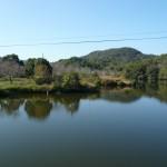 大池遺跡の写真