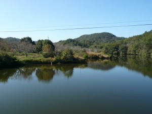 大池遺跡 遠景