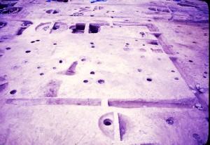 西庄Ⅱ遺跡 屋敷地の様子(区画溝、掘立柱建物、井戸)
